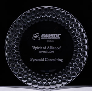 2006 Spirit of the Alliance Award
